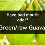 raw guava use